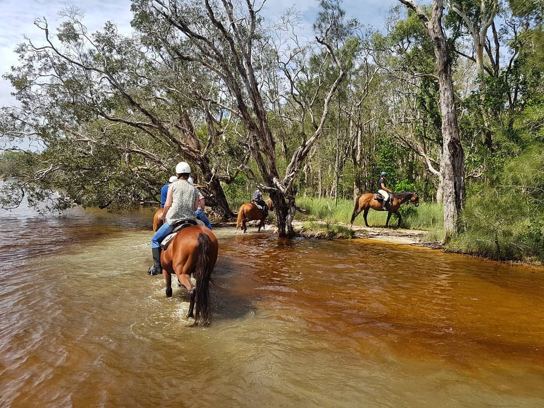 Noosa Horse Riding Experience 1 Hour