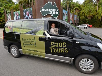 Croc Tours Koala Cuddle Adventure (NOOSA/SUNSHINE COAST)