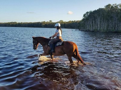 Noosa Horse Riding Experience - Experienced Riders
