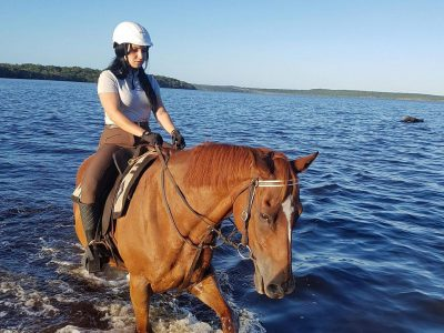 Noosa Horse Riding 1 Hour Lesson