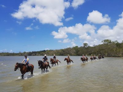 Noosa Horse Riding Experience 2 Hours