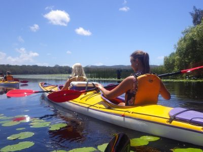 Half Day Noosa Everglades Guided Kayak Tour