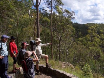 Bushwalkers Adventure - Full Day